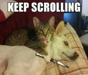 Keep Scrolling Hmm