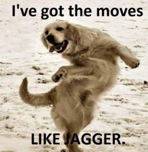 I've Got The Moves