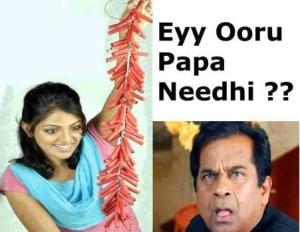 Brahmanandam eyy ooru papa needhi