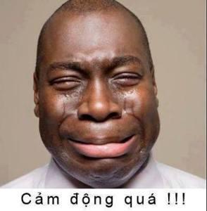 Cam Dong Qua