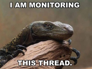 I am monitoring this thread