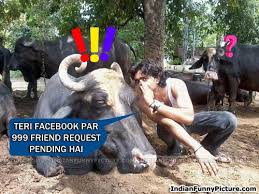 Funny Animals Hindi Comments For Facebook