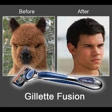 Gillette Fusion Fb Funny Comment Pic