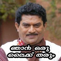 Njan Oru Like Thaarum Malayalam Fun Pic