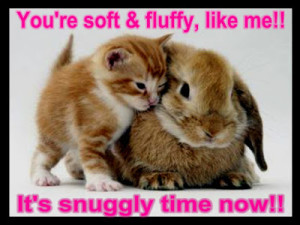 Funny Animals With Funny Sayings In English Fb Pic