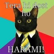 Tera Hi Dost Ho Harami Fb Comment Pic