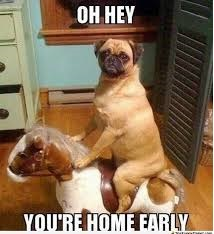 Oh Hey You're Home Early Fb Photo Pic