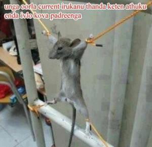 Unga OOrla Current Irukanu Thanada Ketan Fb Pic