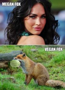 Megan Fox vs Vegan Fox Fb Comment Pic