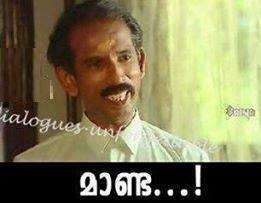 Maanda Malayalam Photo Comment Pic
