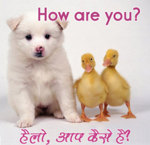 How Are You Hindi Funny Pic