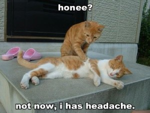 Honee? Not Now I Has Headache