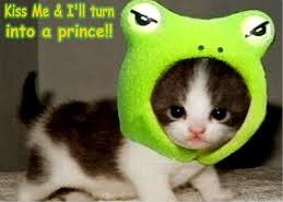 Kiss Me & I'll Turn Into A Prince!!