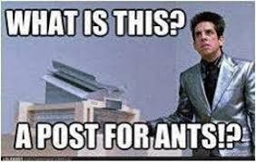 What Is This? A Post For Ants!? Photo Comment