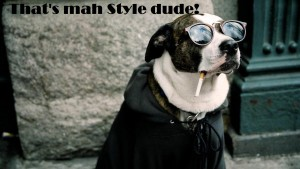 That's Mah Style Dude! Fb Funny Pic