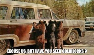 Excuse Us But Have You Seen Goldilocks?