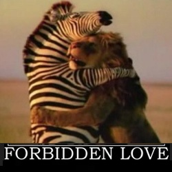 Forbidden Love Fb Photo Comment