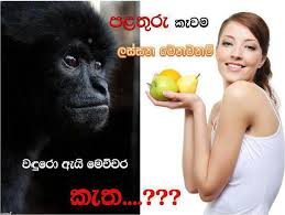 Telugu Funny Comment Picture