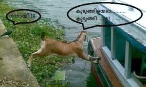 Nannayi!!! Funny Comment Pic