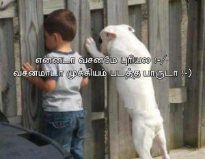 Funny Boy With Pet Picture Image