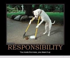 Responsibility Funny Dog Comment Pic