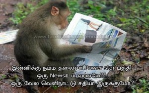 Funny Monkey Reading News Paper