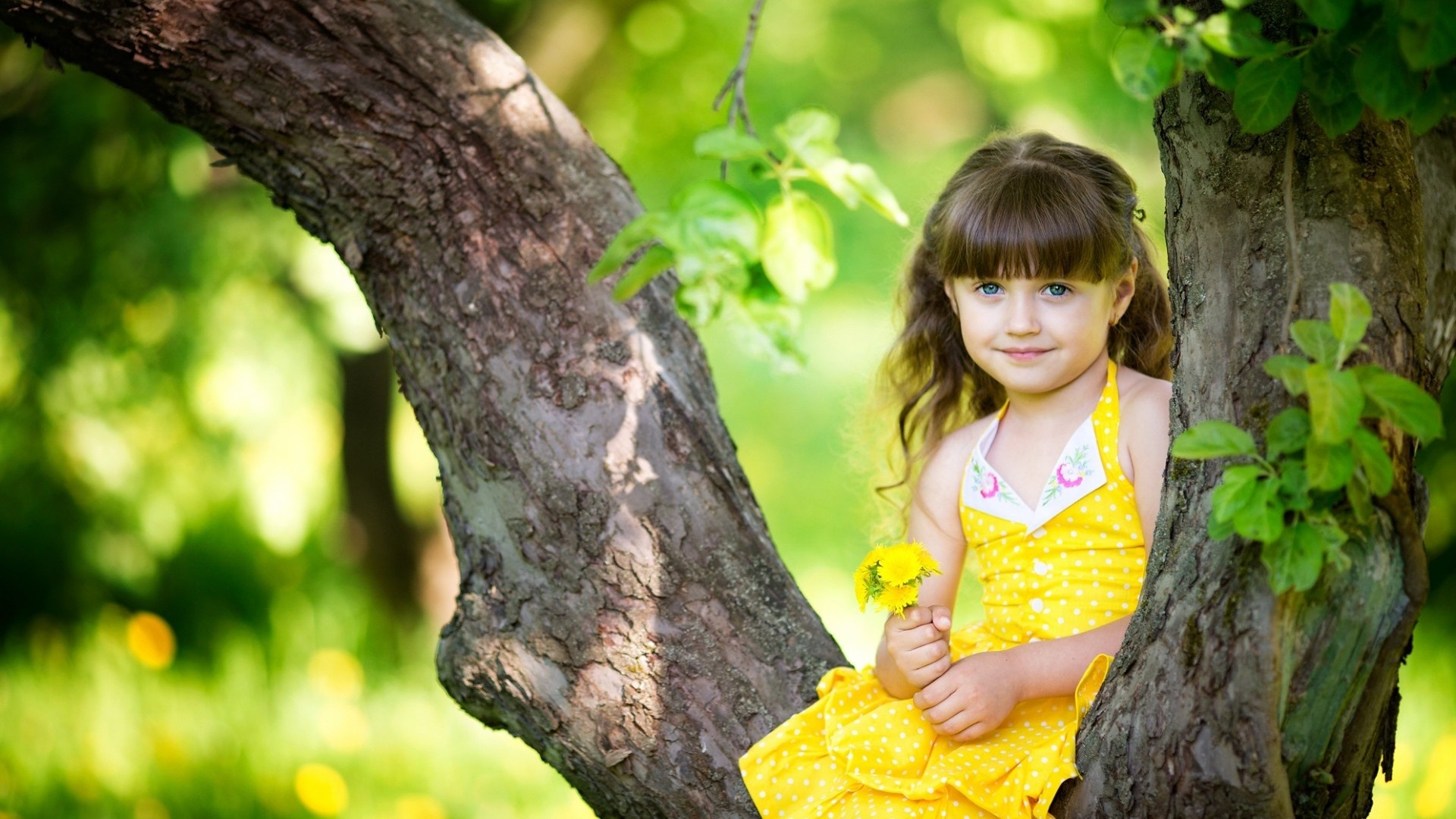 Cute Baby Girl in Yellow Dress Lovely Girl in Yellow Dress