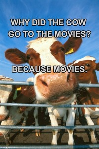 Why Did The Cow Go To The Movies? Fb Comment