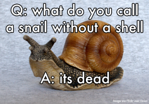 What Do You Call A Snail Without A Shell Fb Comment