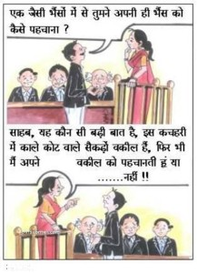 Funny Jokes For Hindi Cartoons