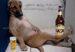 Love Failure Dog