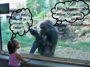 Funny Monkey And A Little Girl Picture