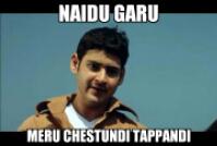 Naidu Garu Meru Chestunadi Tappandi