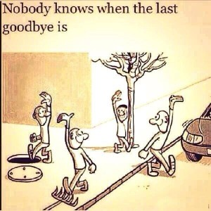 Nobody Knows When The Last Goodbye Is