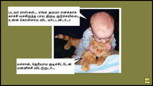 Baby With Cat Funny Comment