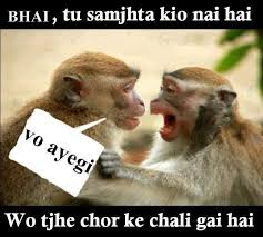 Bhai Tu Samjhta Nai Hai Funny Monkey