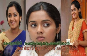 Actress Ananya Picture Comment
