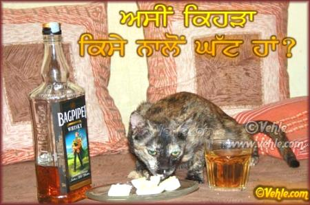 Asin Kehra Ghat Aa