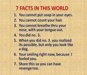 7 Facts In This World