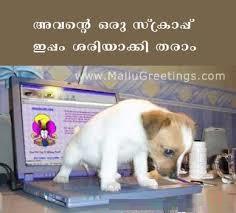 Malayalam Funny Dog Comment Photo
