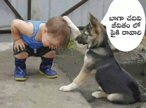 Kid and Dog Funny Comment
