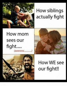 How Siblings Actually Fight