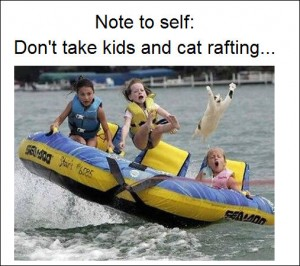 Don't Take Kids and Cat Rafting