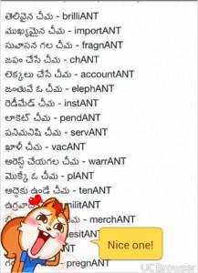 Types of Ants Telugu Funny