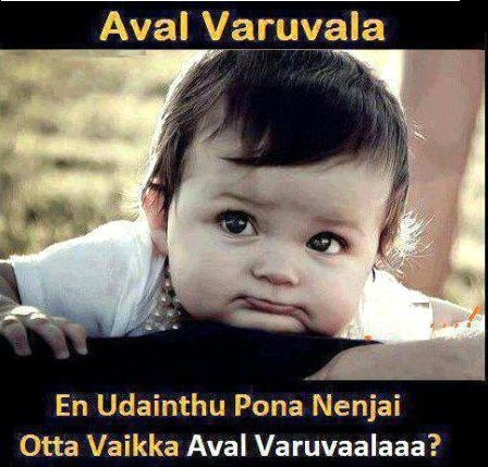 Aval Varuvala Baby Comment Picture