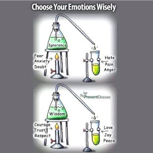 Choose Your Emotions Wisely