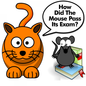 How Did The Mouse Pass Its Exam?