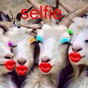 Selfie Funny Photo Comment