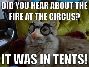 Did You Hear About The Fire At The Circus