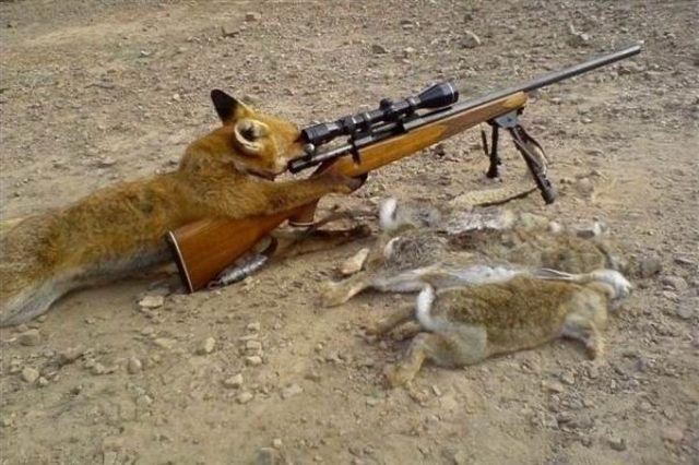 very funy hunting